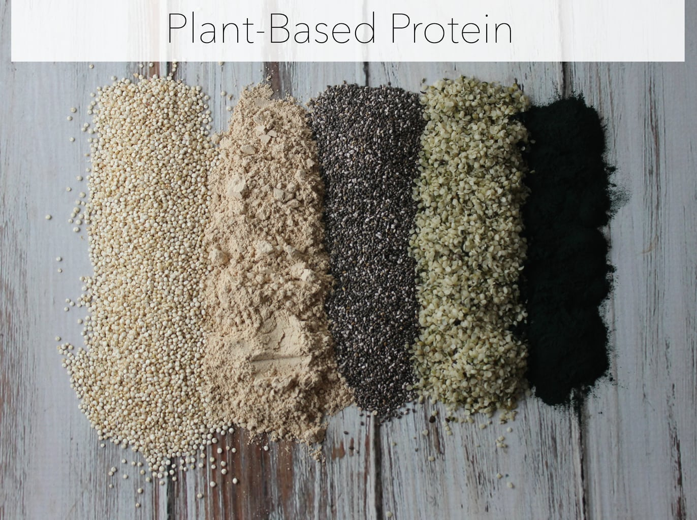 Plant based protein sources exploring healthy foods plant based protein sources fandeluxe Gallery