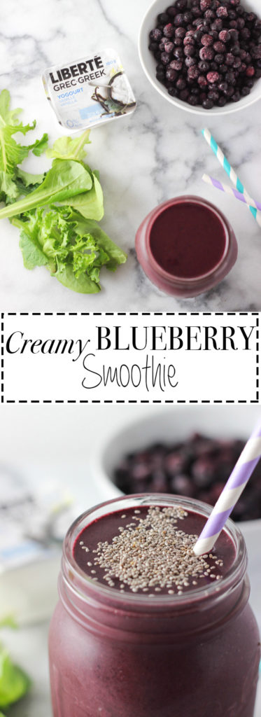CREAMY BLUEBERRY SMOOTHIE! Creamy texture, sweet taste and super nutritious! Loaded with good carbs, antioxidants, fibre and protein! Quick and easy recipe to make!